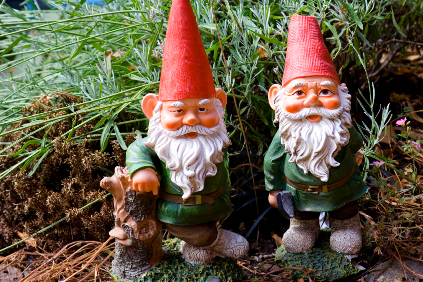 Gnome In Garden: Gnomes And Grasshoppers